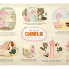 The Tale of Charlie