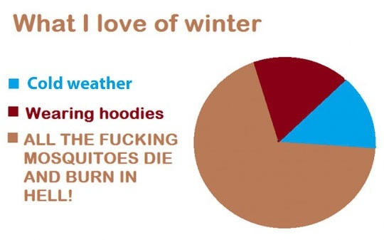 Ahh winter, how i love you
