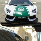 funny-Dubai-rich-people-crazy-animals.