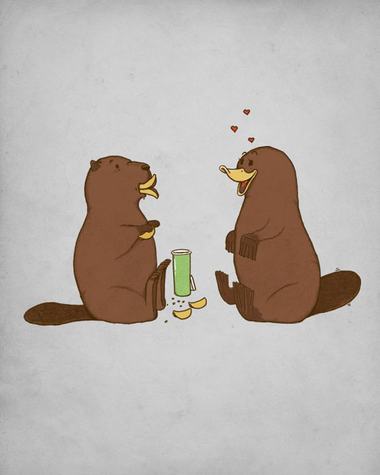 funny-beaver-platypus-chips-love