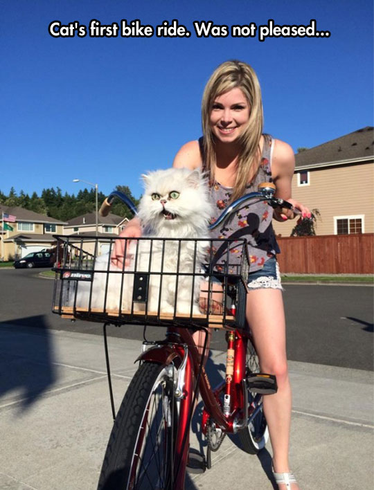 funny-girl-riding-bike-scared-cat