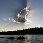 Perfect Wolf Cloud