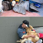 cool-homeless-people-dogs-love