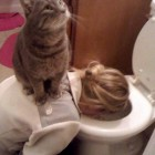 funny-girl-throwing-cat-on-her