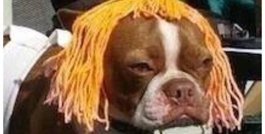 The Fifth Element Cosplay