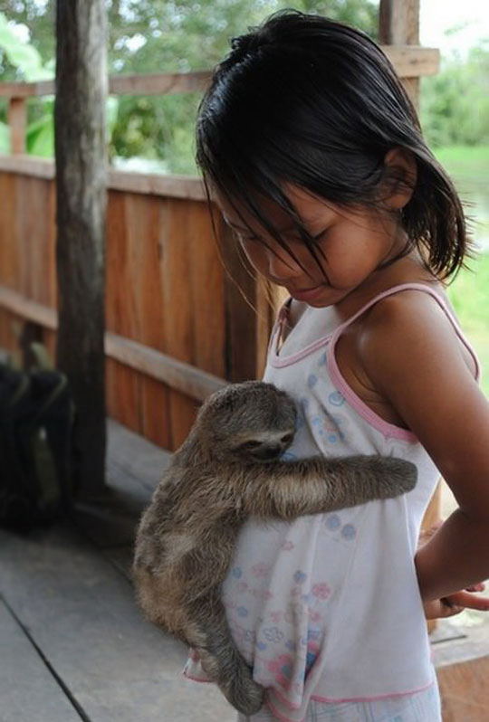 cool-sloth-cute-hugging-girl