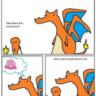 funny-Charizard-son-Pokemon