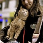 homeless-musician-and-his-cat-3