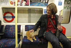 homeless-musician-and-his-cat-5