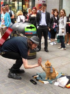 homeless-musician-and-his-cat-6