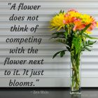 a-flower-does-not-think-of-competing-with-the-flower-next-to-it-it-just-blooms